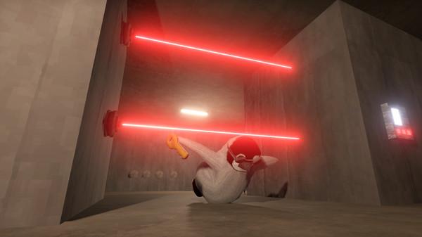 L'ultimo indie sugli animali buffi è uno con i pinguini che fanno rapine