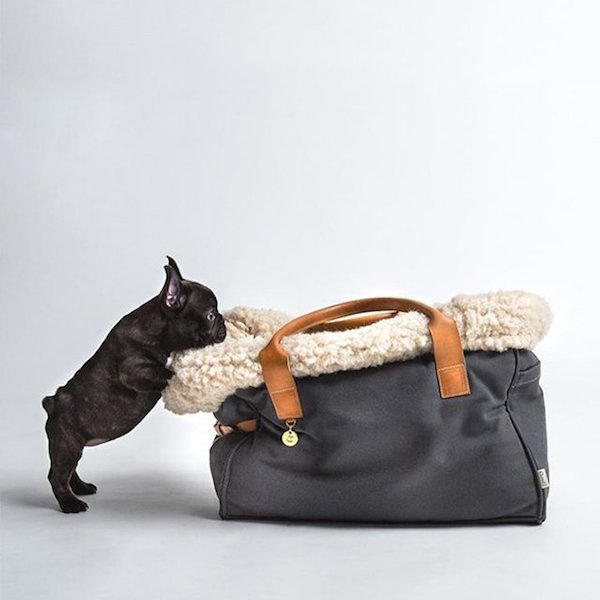 Dog Carrier by Cloud 7