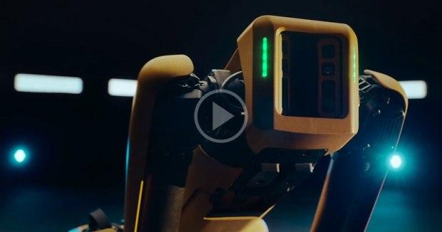 Robot Apocalypse