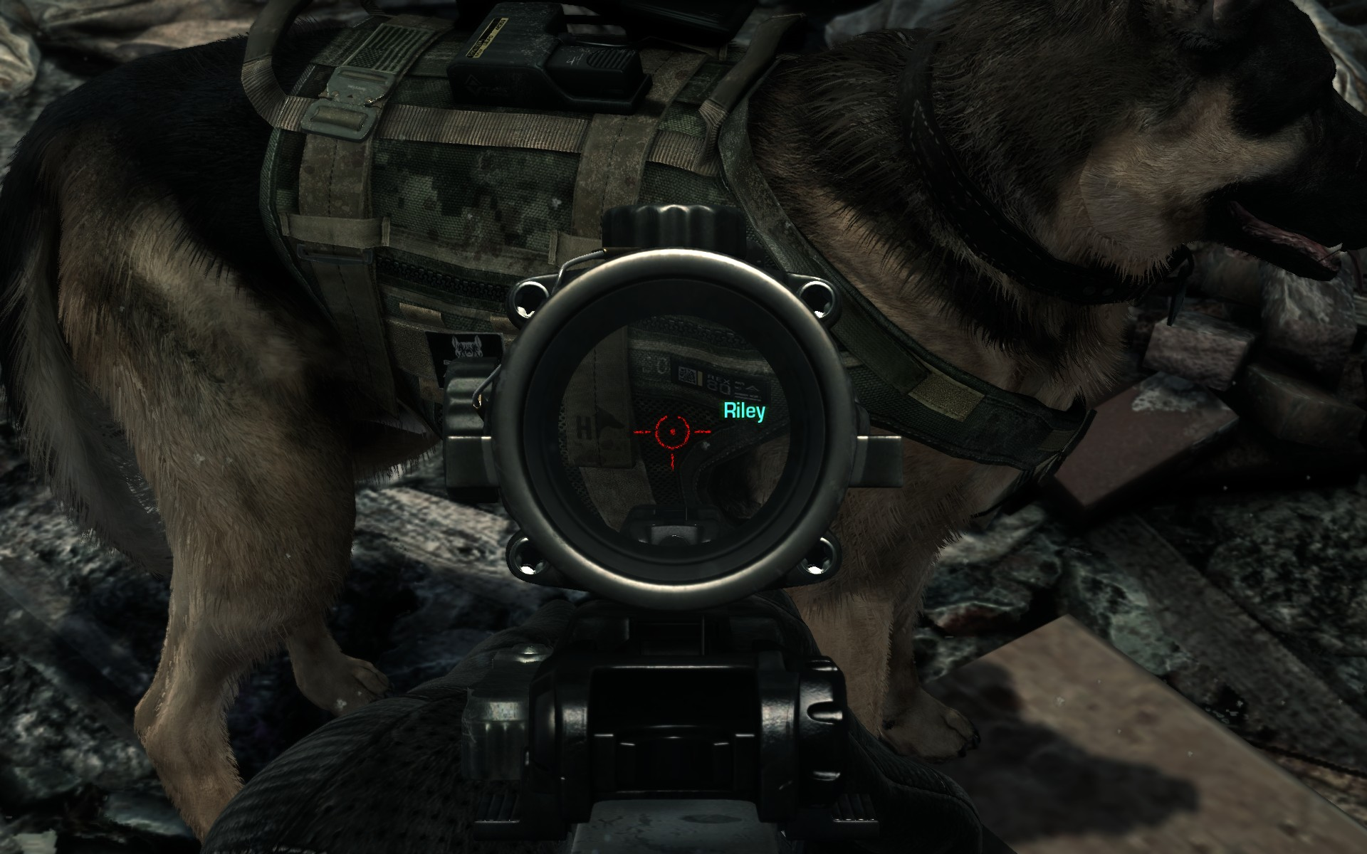 New CoD Ghosts Patch Live Now Adds Nvidias PhysX And Fur Tech Support Comparison Screens Out