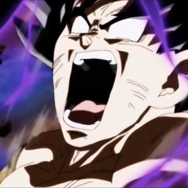 Goku Fail
