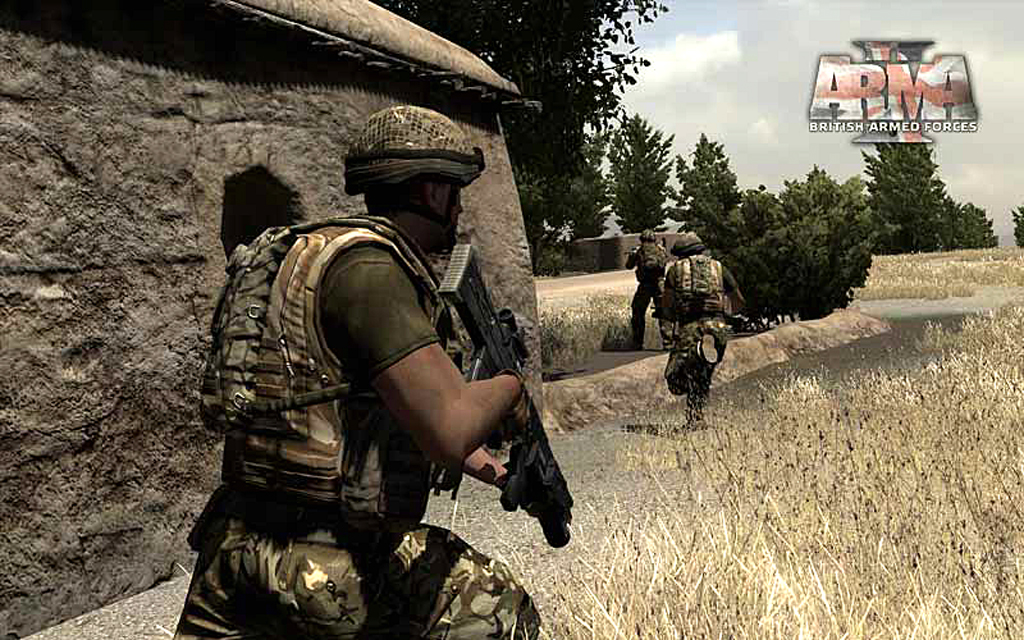 ARMA 2: Reinforcements