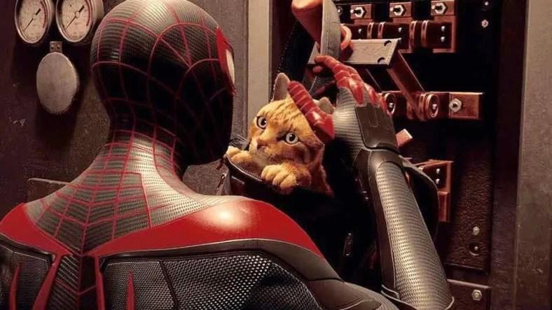 Miles Morales Spider Cat