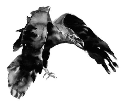 3rd Spirit Crow - New day