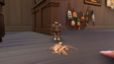 SIMS Chiens et Chats (5)
