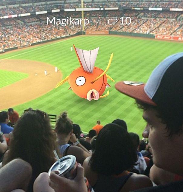 Pokemon Go Stadium 2