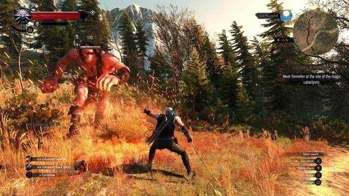Image result for Witcher 3 combat