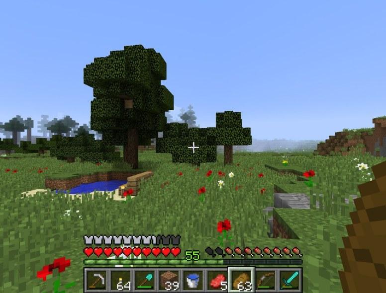 minecraft_tim_21