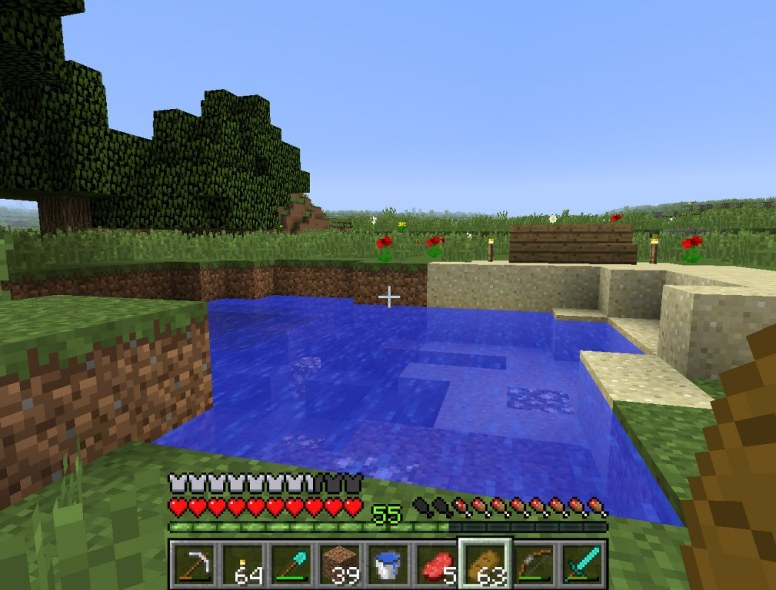 minecraft_tim_22