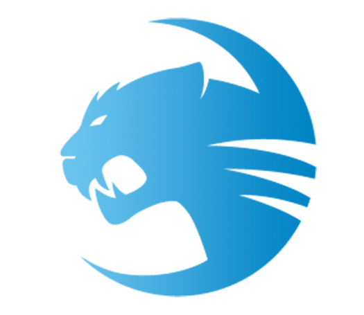 ROCCAT Signs Up Heroes of the Storm Team