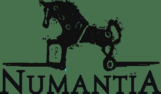Numantia Review for PlayStation 4