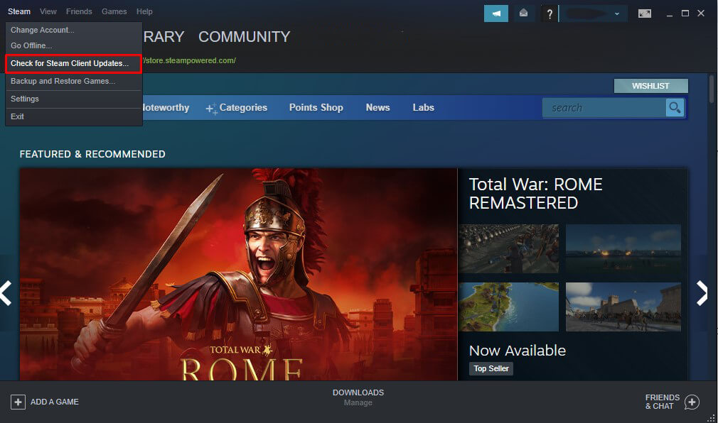 check for steam client update