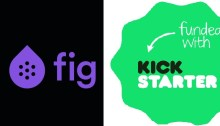 Videogame crowdfunding campaigns