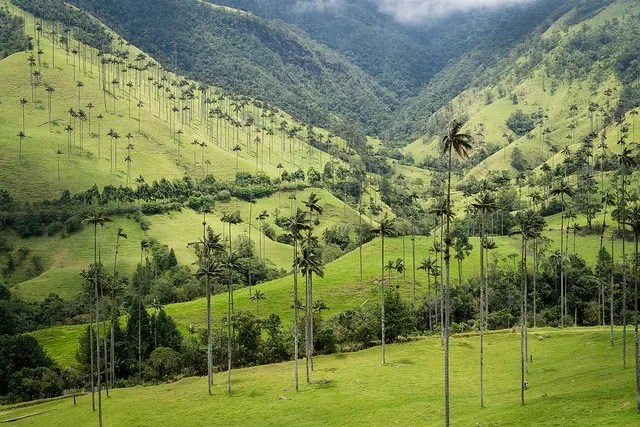 things to do in colombia, backpacking colombia guide, backpacking colombia, best time to visit colombia, how to get to colombia, colombia travel itinerary, places to visit in colombia