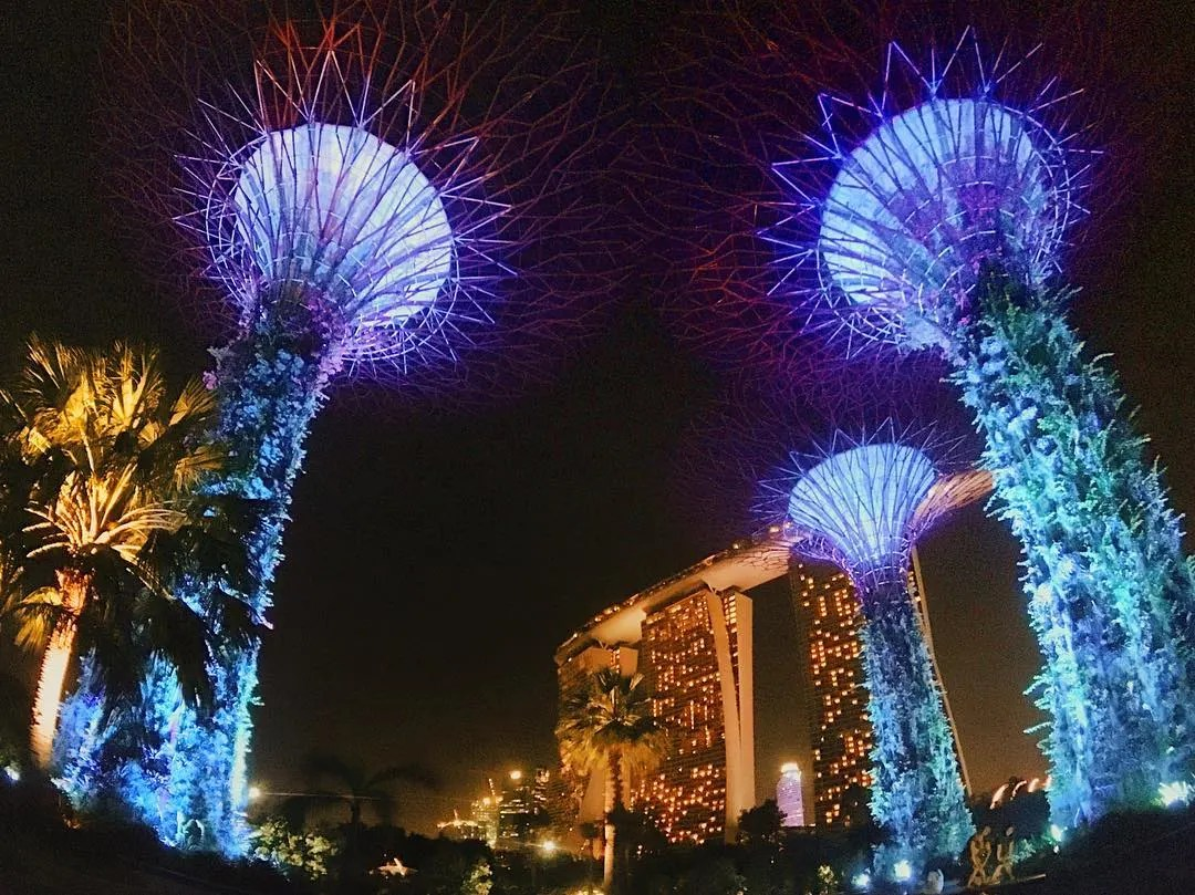 Singapore, Instagrammable places in Singapore, garden by the bay