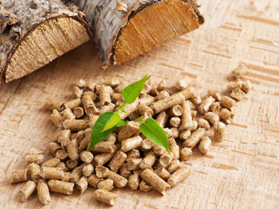 Ventajas del pellet donde se muestra un puñado de pellet en el suelo y unos troncos de madera detrás.