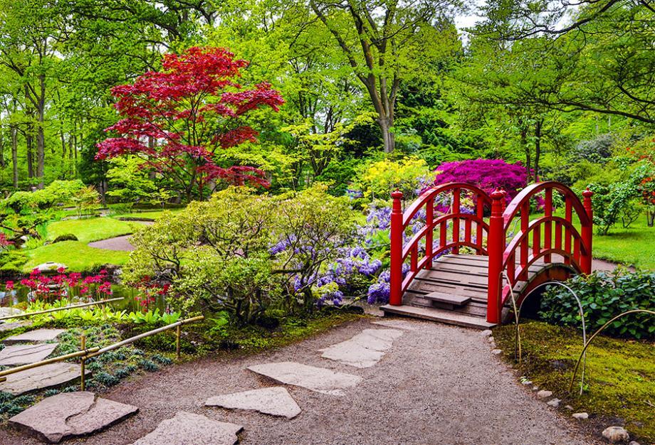 souffle asiatique dans votre jardin