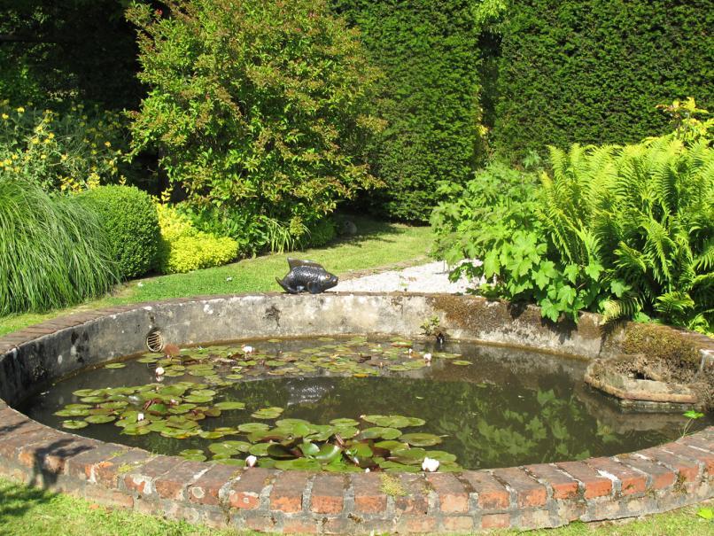 entretien de son bassin de jardin