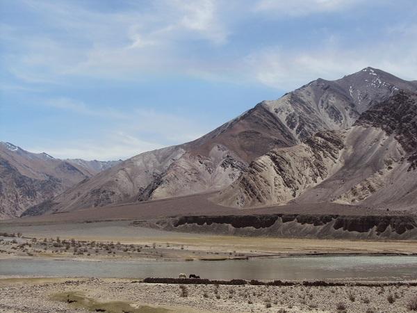 la route vers Tso Moriri, avec les chevaux