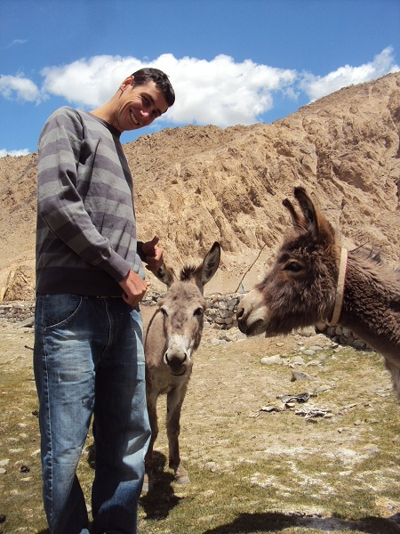 Picnic avec trois ânes, non loin de Leh