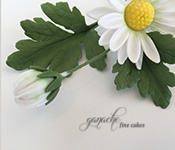 Handcrafted Sugar Flowers- Marguerite Daisy