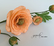 Handcrafted Sugar Flowers- Ranunculus