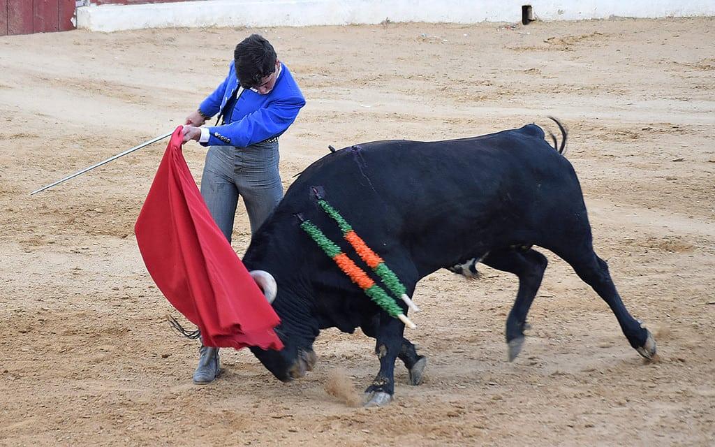 Festival taurino sin picadores de El Herrumblar Cuenca