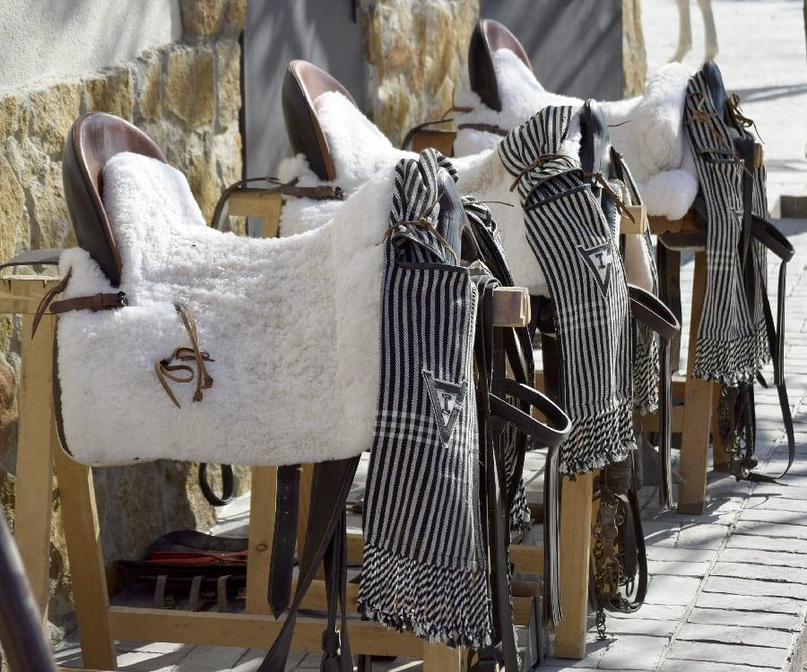 Sillas de doma vaquera, el utilizado en la finca de la Ganadería San Isidro