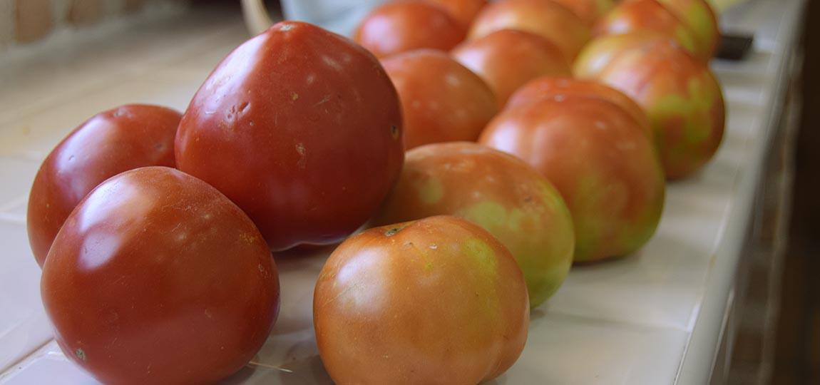 Estupendos tomates,