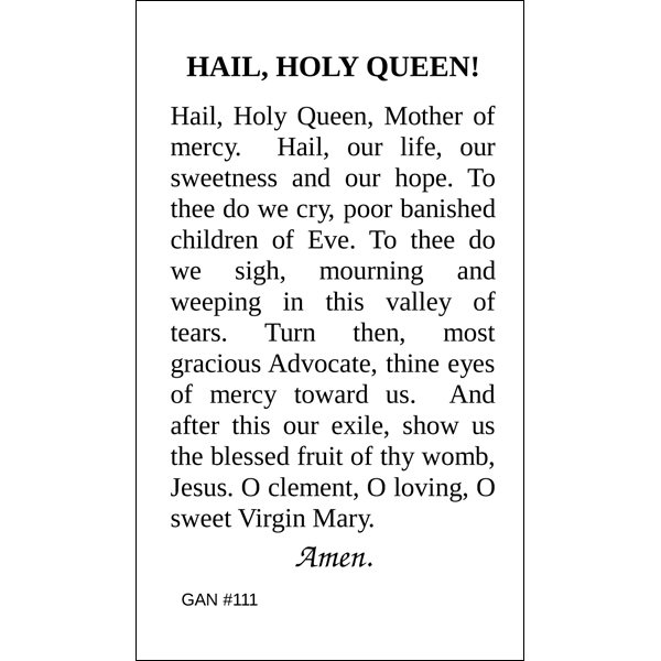 Ambitious image intended for hail holy queen prayer printable