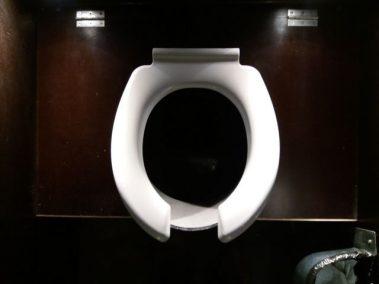 Assise des toilettes
