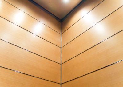 Close Up Elevator Rear Corner Wall Panels -- EPIC Solution GR601e elevator interior design at the new Minnesota State Legislative Office Building, St. Paul MN