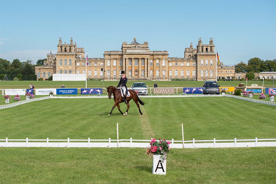 An image of a horse competing at the Blenheim Palace International Horse Trials - book a chauffeur to this event from GandT Executive