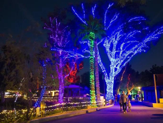 Zoo Lights Az