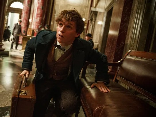 With 'Fantastic Beasts,' Rowling works movie magic