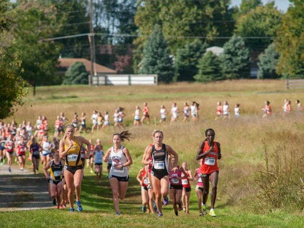Gallery | Greater Louisville Cross Country Classic