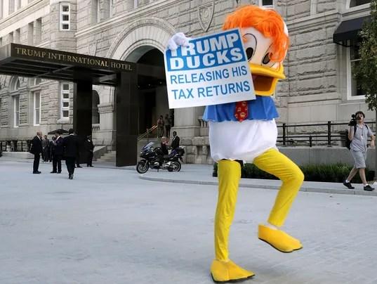 Image result for trump ducks