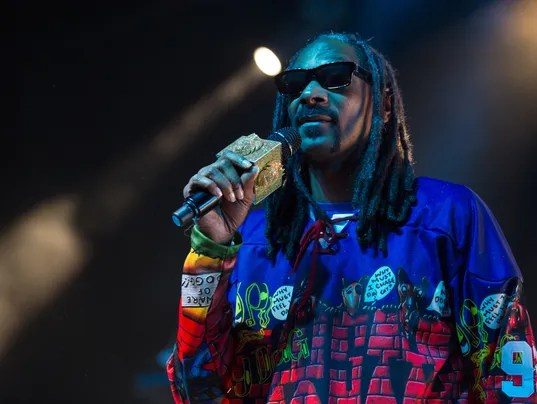 Snoop Dogg highlight of many varied festivals in the valley