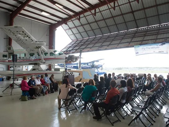 Fly the Whale welcomed to St. Lucie airport by lawmakers ...