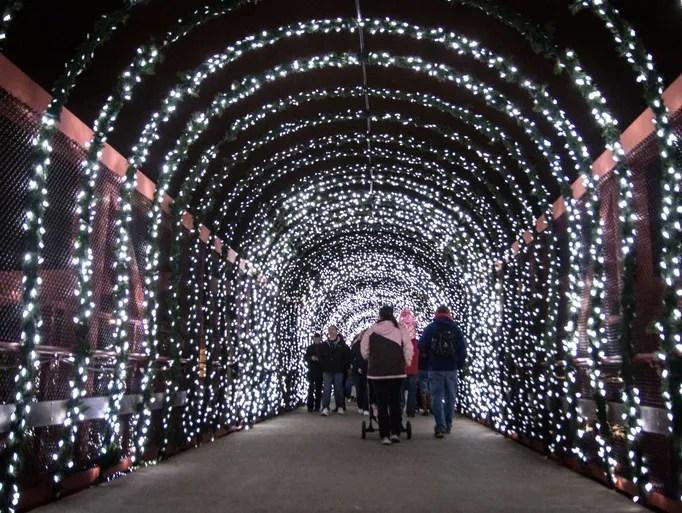 Christmas Lights Cincinnati Zoo