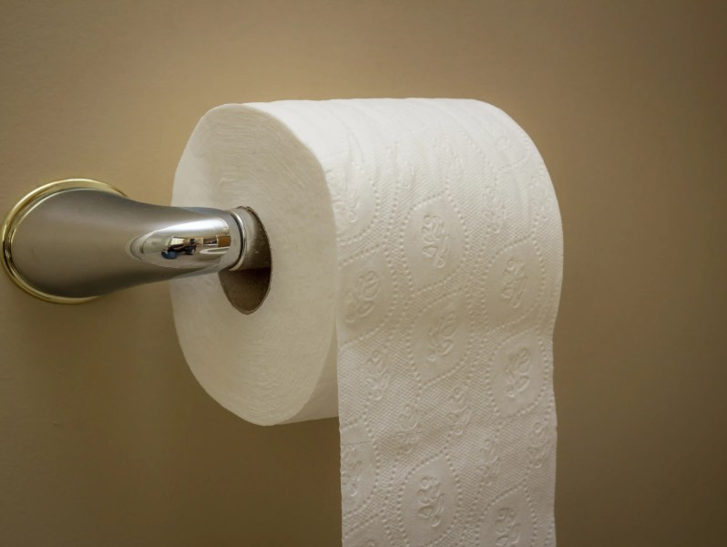 National Toilet Paper Day  5 quirky tidbits about toilet paper