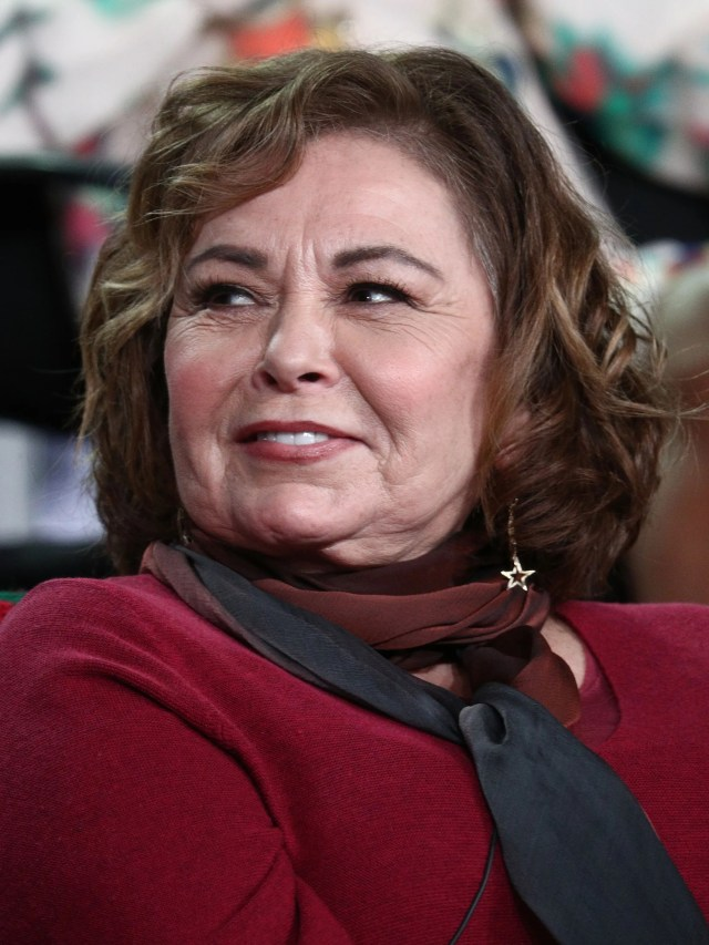 Roseanne Barr is back on social media, but limiting her topics on Twitter, as the March 27 premiere of the revival of