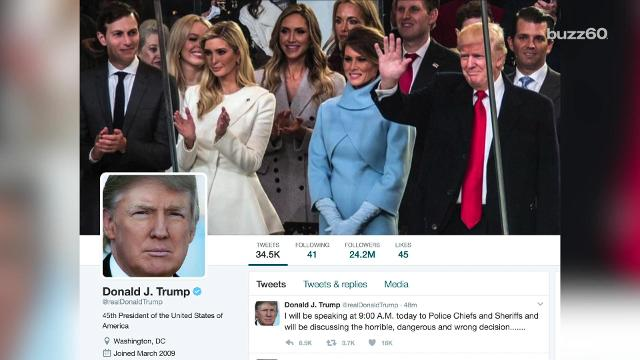 How many fake Twitter followers does Donald Trump have?