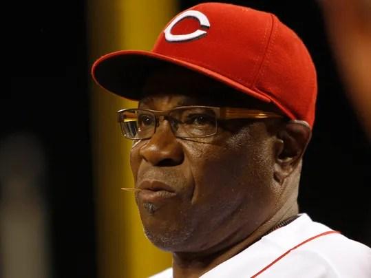 https://i1.wp.com/www.gannett-cdn.com/-mm-/7be0eb1afc93b6a123eb456cfcabf071059b9ed8/c=0-286-2898-2457&r=x404&c=534x401/local/-/media/USATODAY/USATODAY/2013/10/04/1380887908000-USP-MLB-St-Louis-Cardinals-at-Cincinnati-Reds.jpg