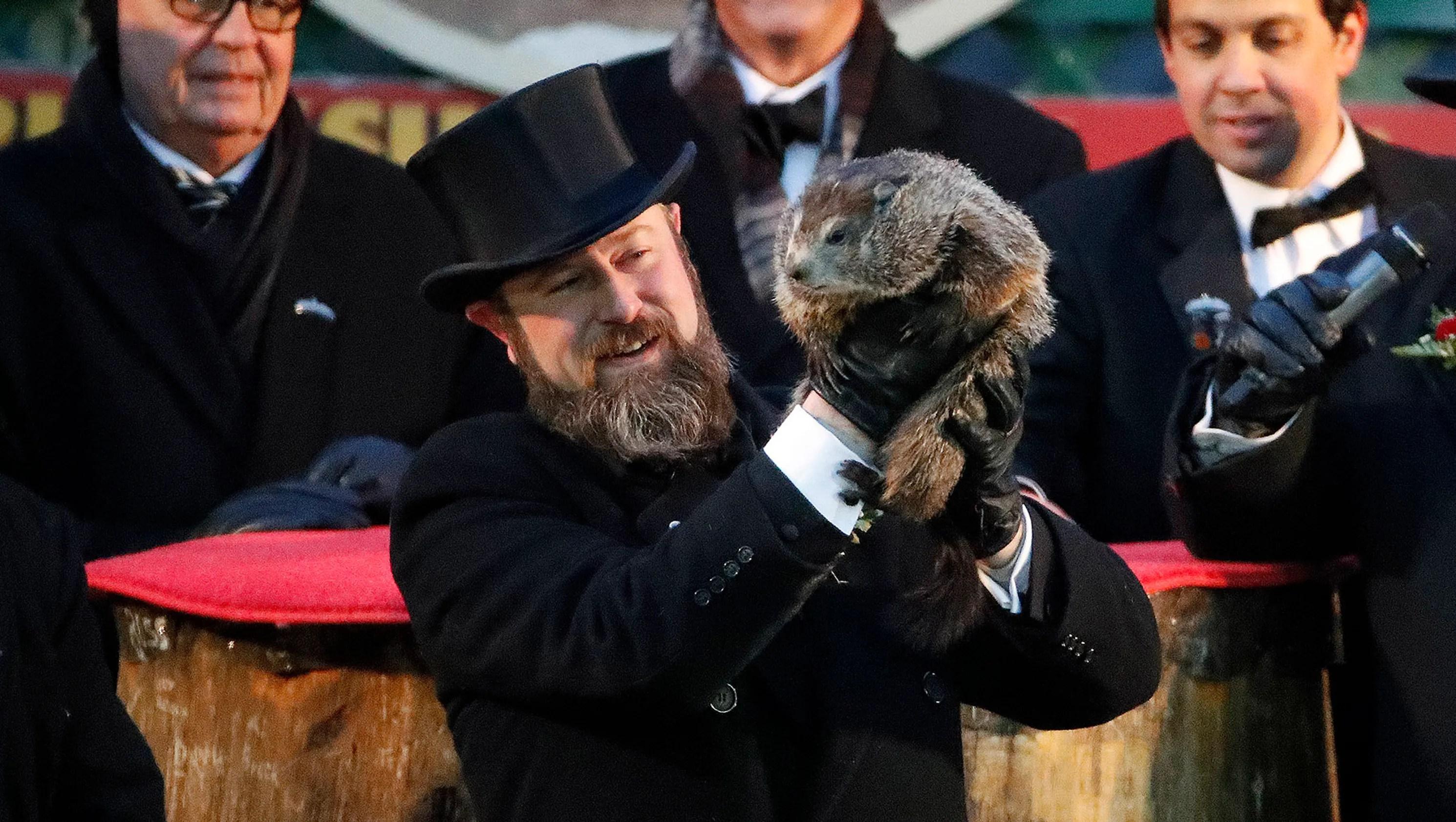 Groundhog Day Punxsutawney Phil Sees His Shadow