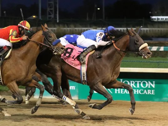 635842486383451812-PHOTO-20151127-Effinex-Wins-Clark-Handicap-finish-.jpg