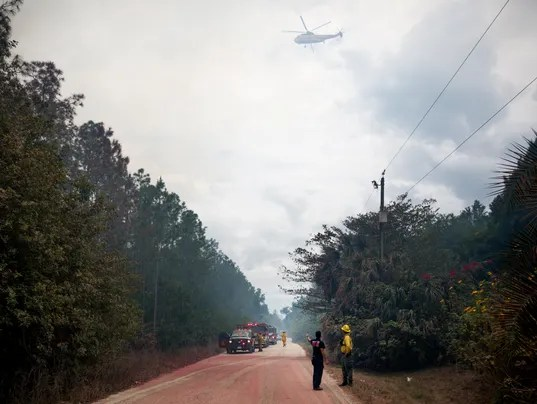 Florida brush fire destroys 3 homes, residential ...