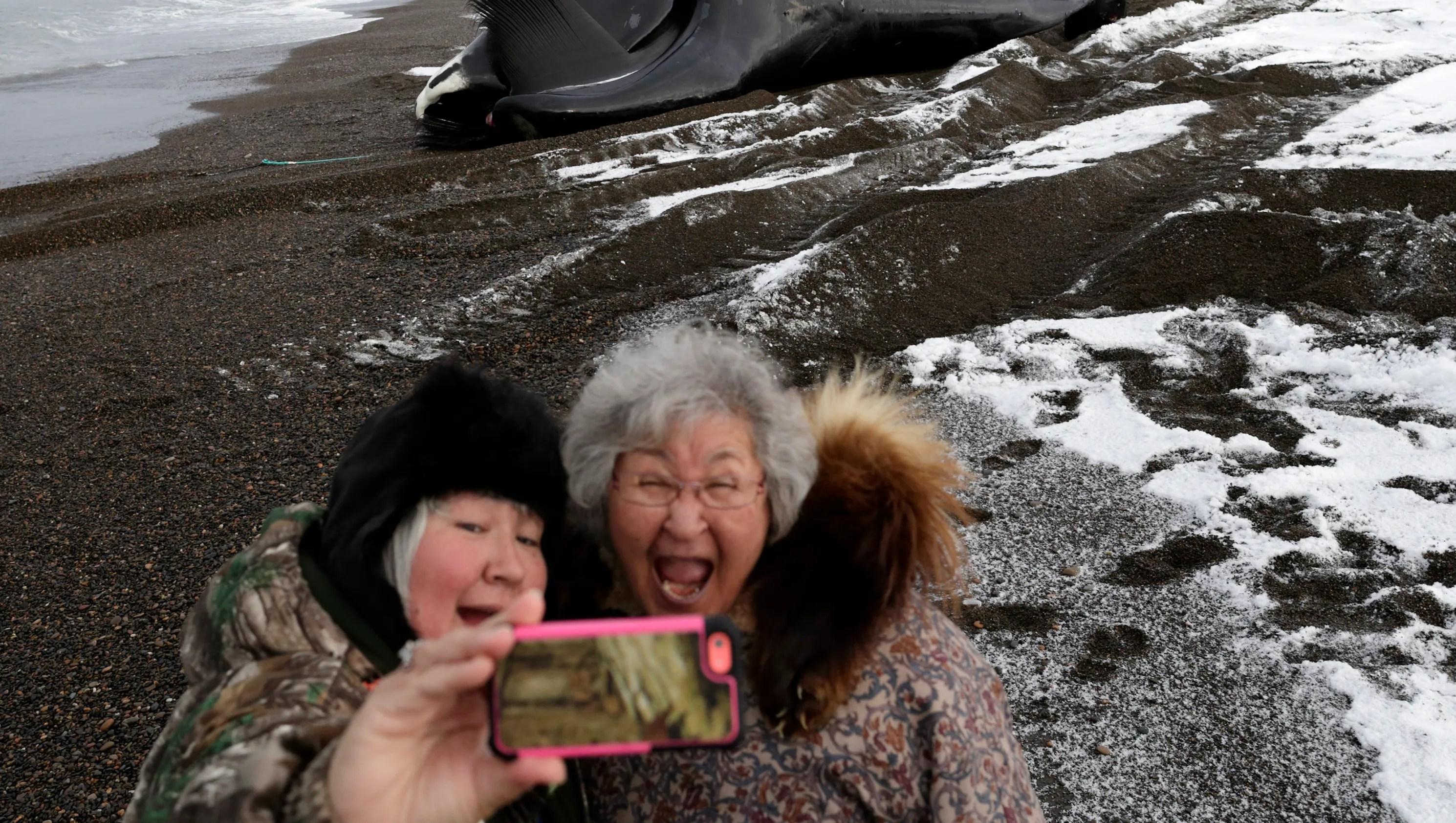 An Alaskan Whaling Harvest