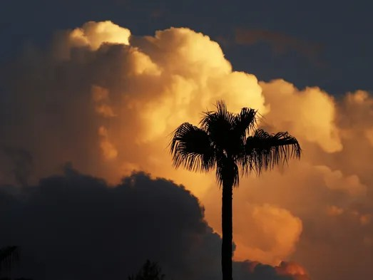 A fast-moving evening monsoon thunderstorm brings wind,
