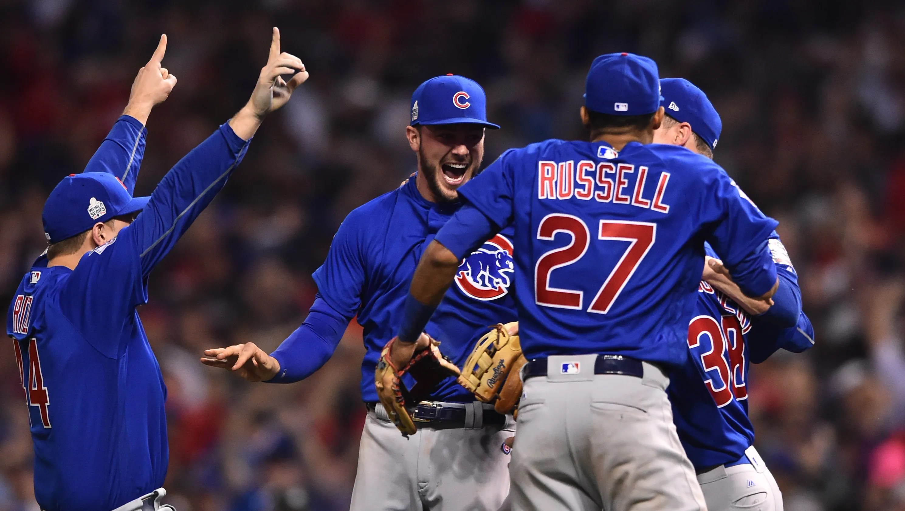 Image result for the chicago cubs